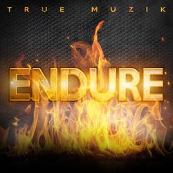 Endure Lyrics